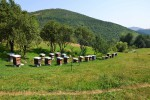 Kamp Uvac, Nova Varoš, Srbija - Camping Uvac, Nova Varoš, Serbia, photo by Martin Bischoff