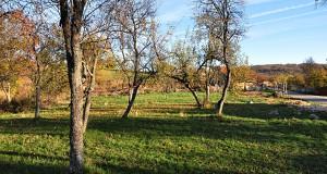 Camping Iva - livade Rožanstva - camping ground in village Rozanstvo, Zlatibor, Serbia