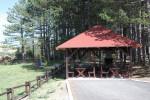 Kamp Zlatibor 2